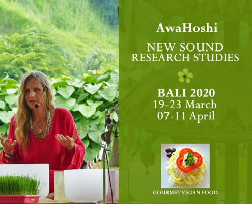 Crystal Sound AwaHoshi Bali Retreat 2020 - 19-23 March & 7-11 April